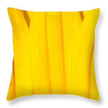 Rays Of Sunflower Throw Pillow by Luke Moore