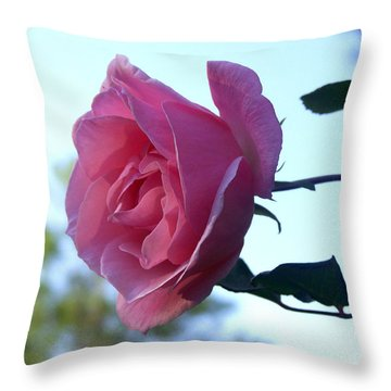 Throw Pillow featuring the photograph Reaching For Sunlight by Kathy  White