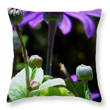 Reaching For The Future Throw Pillow by Rory Sagner
