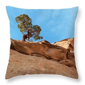 Reaching For The Sun Throw Pillow by Bob and Nancy Kendrick