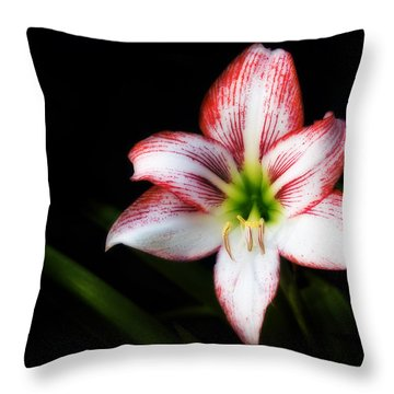 Reaching For You Throw Pillow by Steven Richardson
