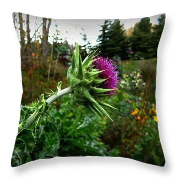 Reaching Milk Thistle Throw Pillow by Shirley Sirois
