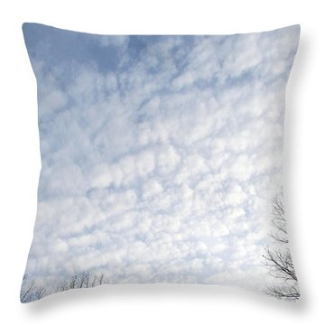 Throw Pillow featuring the photograph Reaching The Clouds by Pamela Hyde Wilson