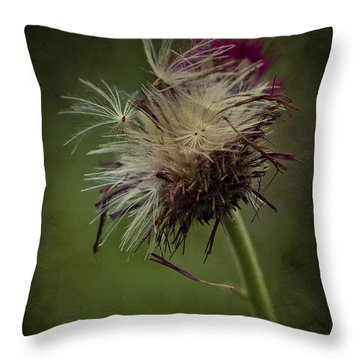 Ready To Fly Away... Throw Pillow by Clare Bambers