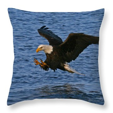 Throw Pillow featuring the photograph Ready To Strike by Doug Lloyd