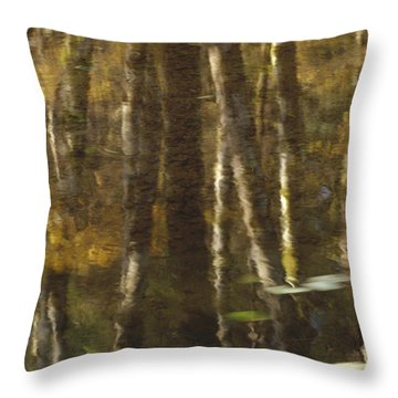 Red Alder Alnus Rubra And Vine Maple Throw Pillow by Gerry Ellis