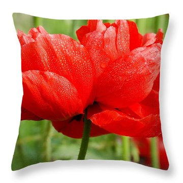 Throw Pillow featuring the photograph Red And Green by Fotosas Photography