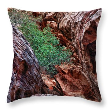 Red And Green Throw Pillow by Rick Berk