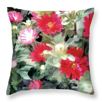 Red Asters Throw Pillow by Elaine Plesser