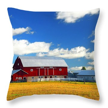 Red Barn Throw Pillow by Elena Elisseeva