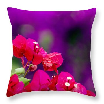 Red Bougainvillaeas Throw Pillow by Ron Dahlquist