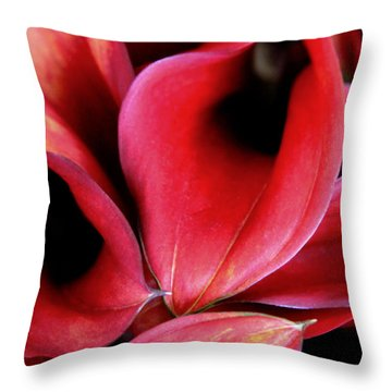 Red Calla Lilies Throw Pillow by Tony Grider