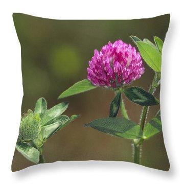 Red Clover Blossom Throw Pillow