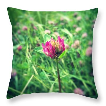 Red Clover Flower Throw Pillow