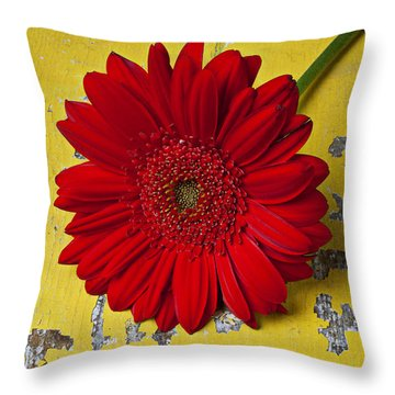 Red Daisy And Old Key Throw Pillow by Garry Gay