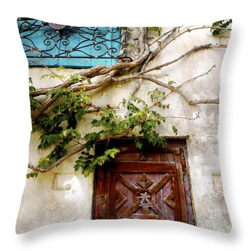 Red Door Blue Door Throw Pillow