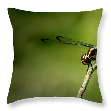 Red Dragon 2 Throw Pillow