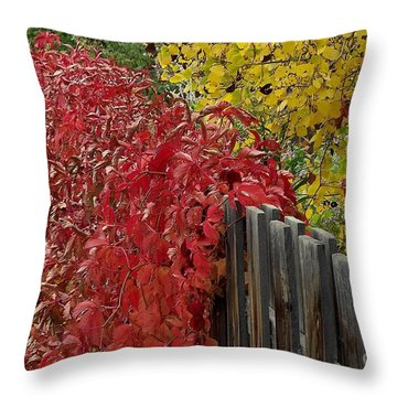Red Fence Throw Pillow by Dorrene BrownButterfield