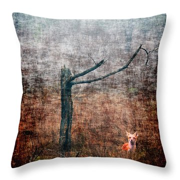 Throw Pillow featuring the photograph Red Fox Under Tree by Dan Friend