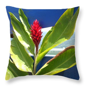 Red Ginger Throw Pillow by Randi Shenkman