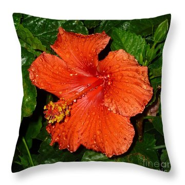 Throw Pillow featuring the photograph Red Hibiscus After The Rain by Renee Trenholm