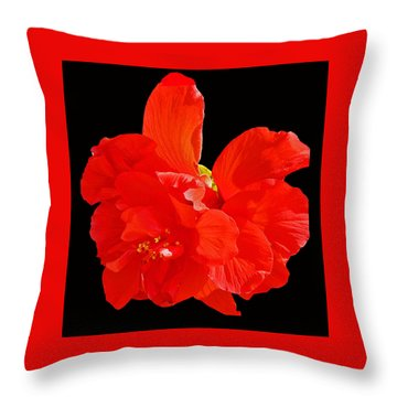 Red Hibiscus Throw Pillow by Cindy Manero