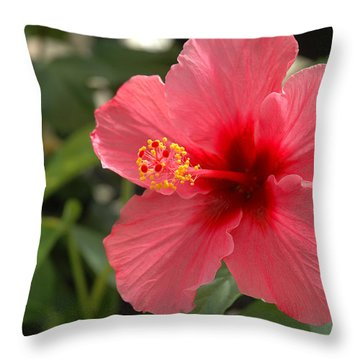 Red Hibiscus Throw Pillow by Jerry McElroy