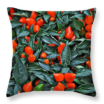 Red Hots Throw Pillow by Mary Machare