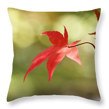 Red Leaf. Throw Pillow by Clare Bambers