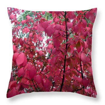 Red Leaves I Throw Pillow by Alys Caviness-Gober