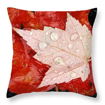Red Maple Leaves Throw Pillow by Mike Grandmailson