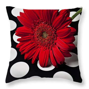 Red Mum With White Spots Throw Pillow by Garry Gay