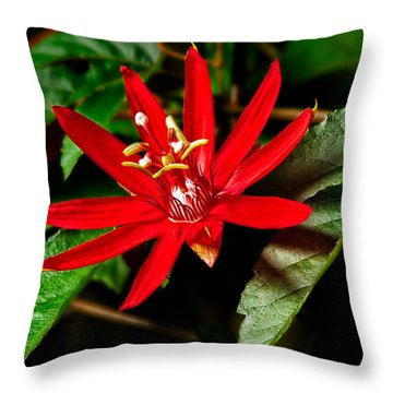 Red Passion Throw Pillow by Christopher Holmes