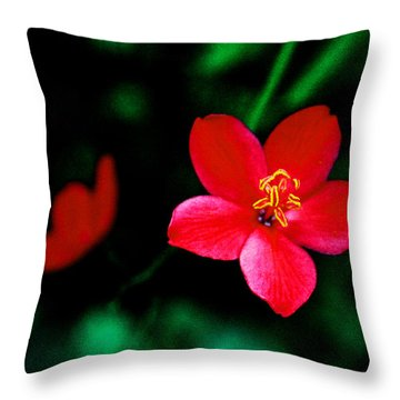 Red Petaled Dream Throw Pillow