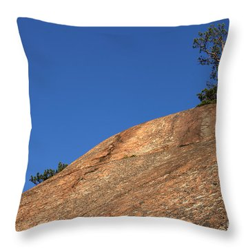 Red Pine Tree Throw Pillow by Ted Kinsman
