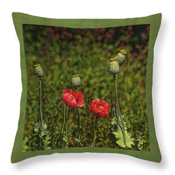 Red Poppies Throw Pillow by Bonnie Bruno