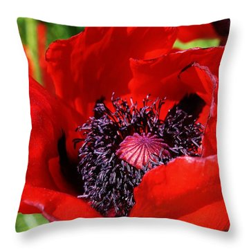 Red Poppy Close Up Throw Pillow