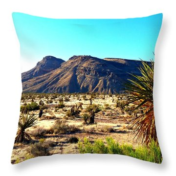 Red Rock Canyon 10 Throw Pillow by Randall Weidner