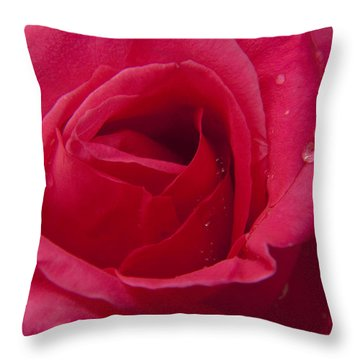 Throw Pillow featuring the photograph Red Rose With Rain Tears by Darleen Stry