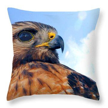 Throw Pillow featuring the photograph Red Shouldered Hawk Portrait by Dan Friend