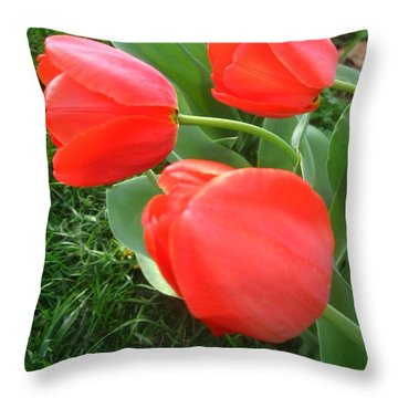 Red Spring Tulips Throw Pillow