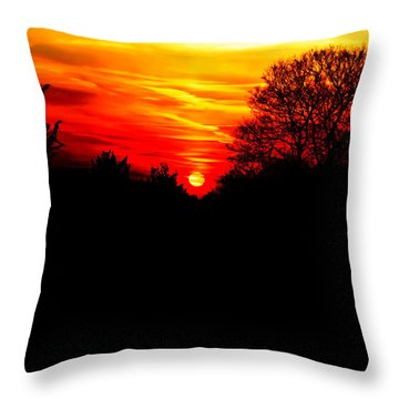 Red Sunset Vertical Throw Pillow by Jasna Buncic