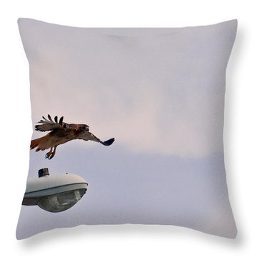 Red-tailed Hawk In Flight Throw Pillow