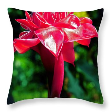 Red Torch Ginger Throw Pillow by Jocelyn Kahawai