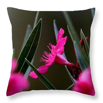 Red Flower Throw Pillow by Travis Truelove