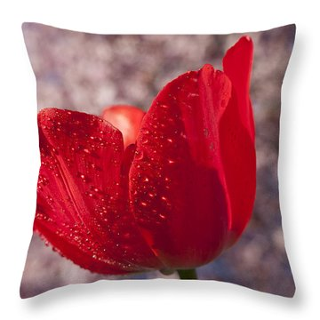 Red Tulip And Cherry Tree Throw Pillow by Garry Gay