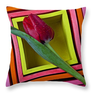 Red Tulip In Box Throw Pillow by Garry Gay