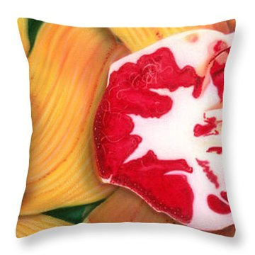 Red White And Yellow Throw Pillow