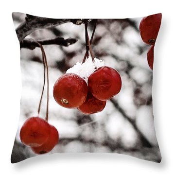 Red Winter Berries Throw Pillow