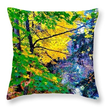 Reed College Canyon Fall Leaves II Throw Pillow by Anna Porter